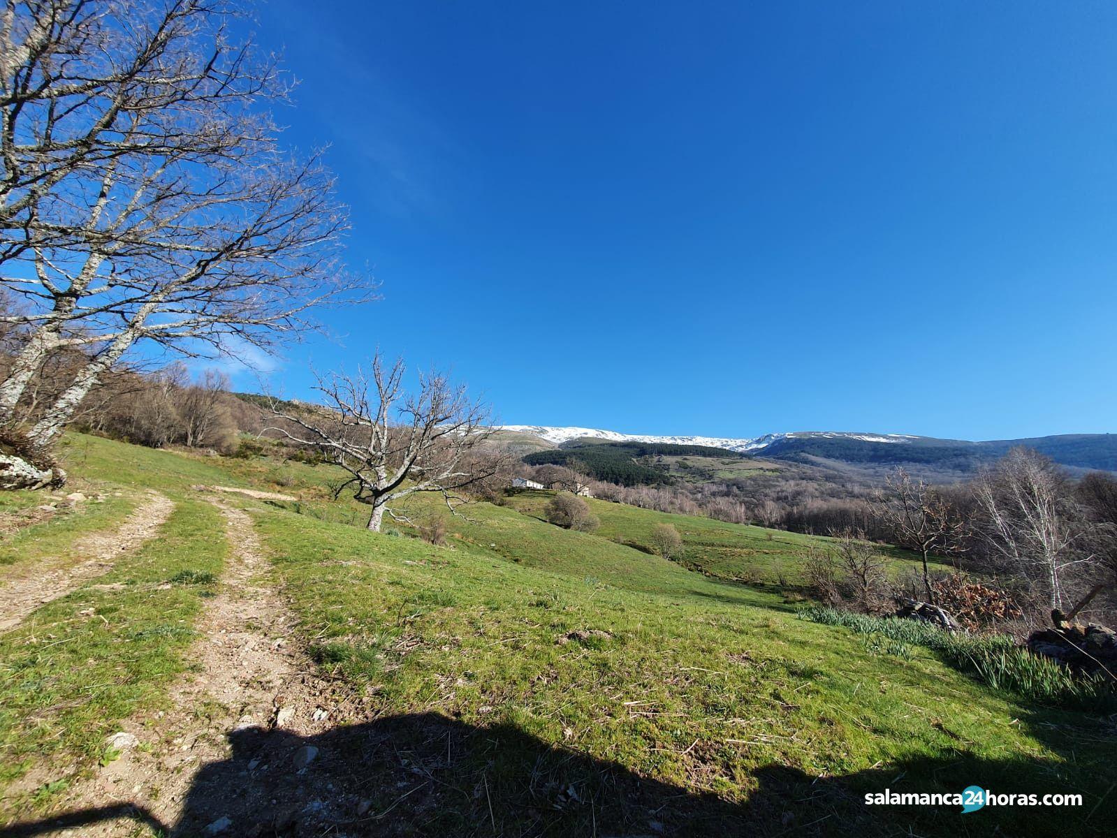 Ruta Cascada de La Mangá (20)