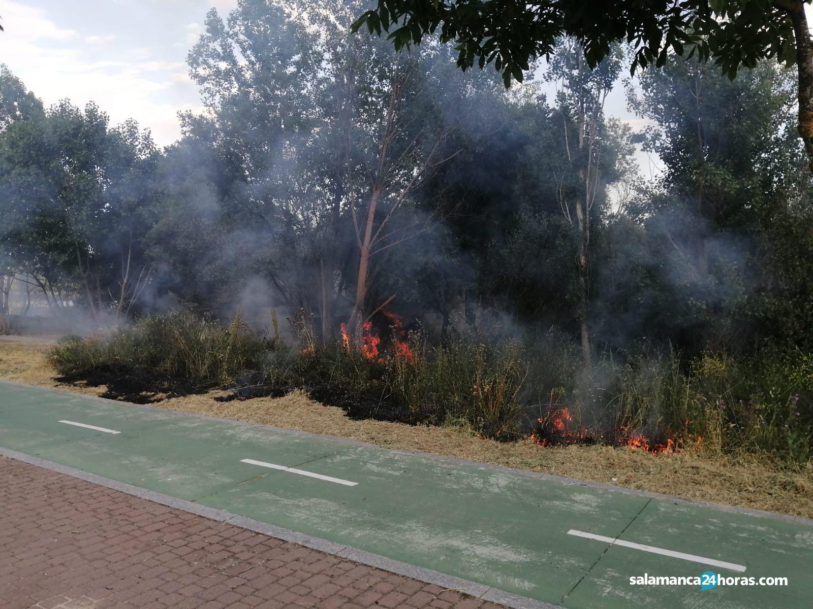 Incendio en el paseo fluvial en la tarde de este viernes, 28 de mayo (12)