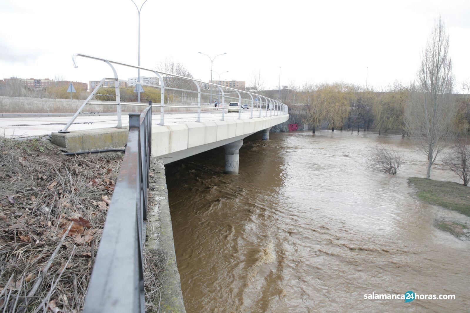 Río Tormes Salamanca Arroyo Zurguén (29)