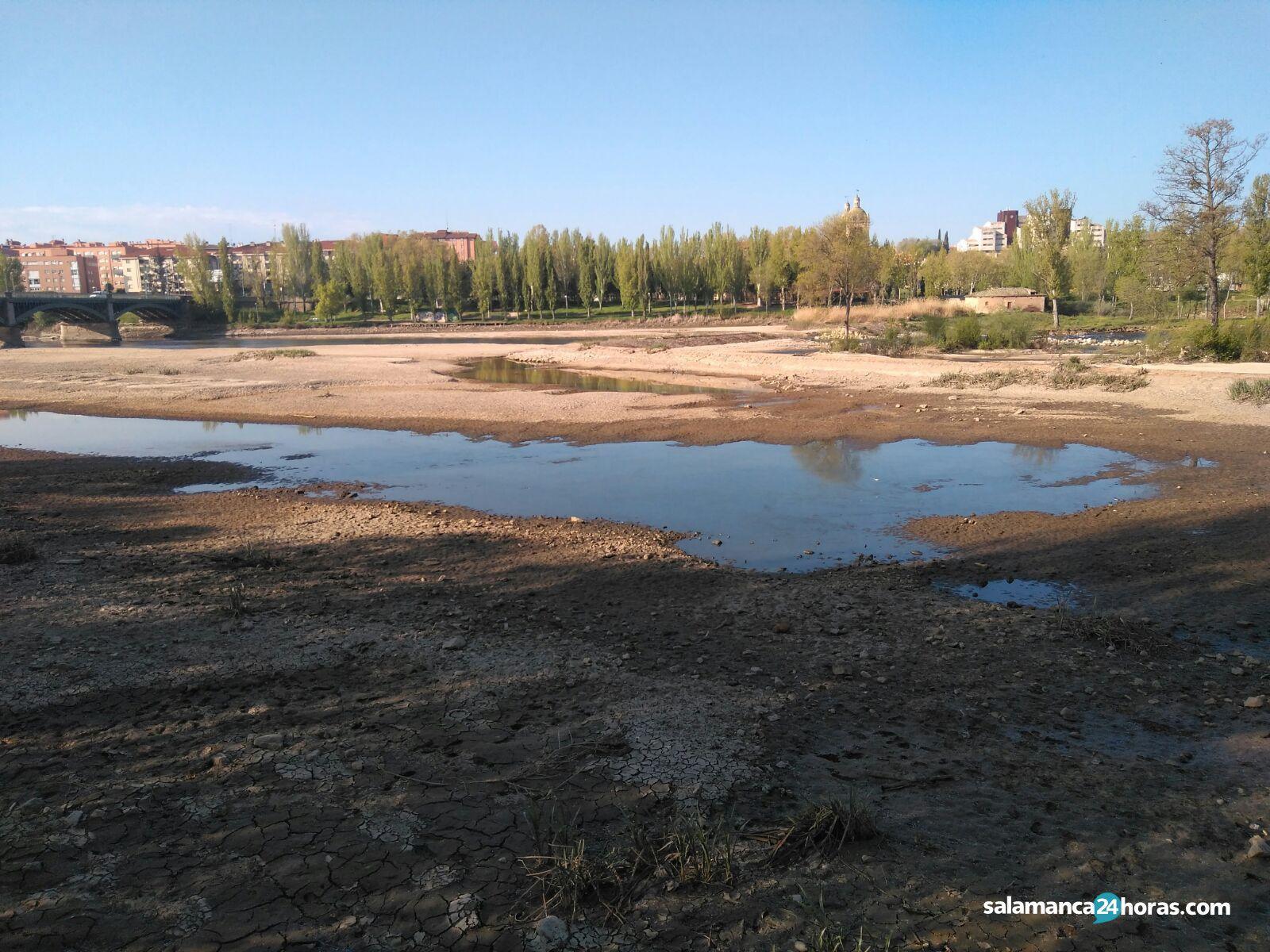 Río Tormes pesquera