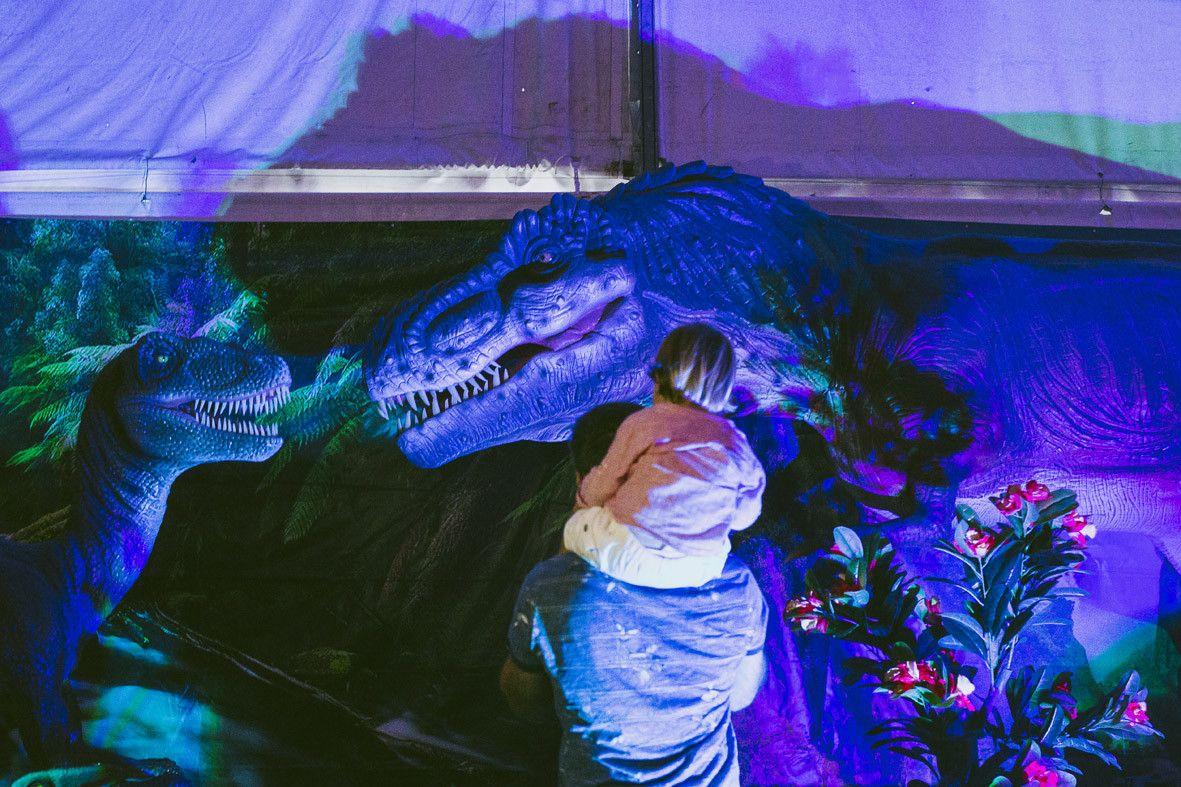 Dinosaurs Tour 2