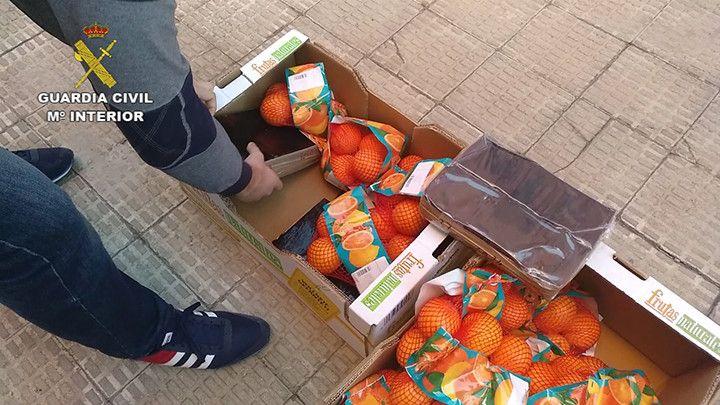 Op portokall salamanca editada.Imagen fija003