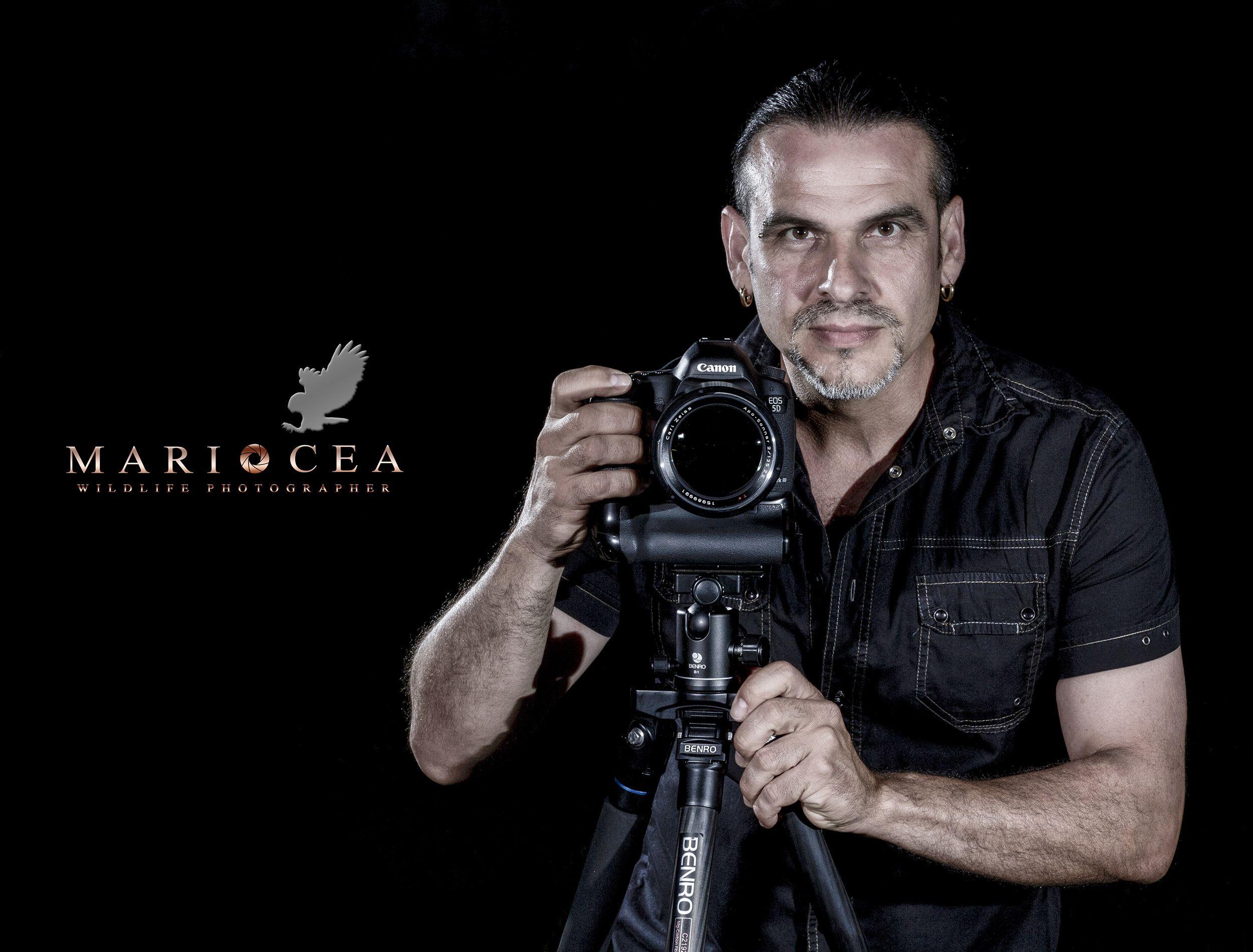 Mario Cea.