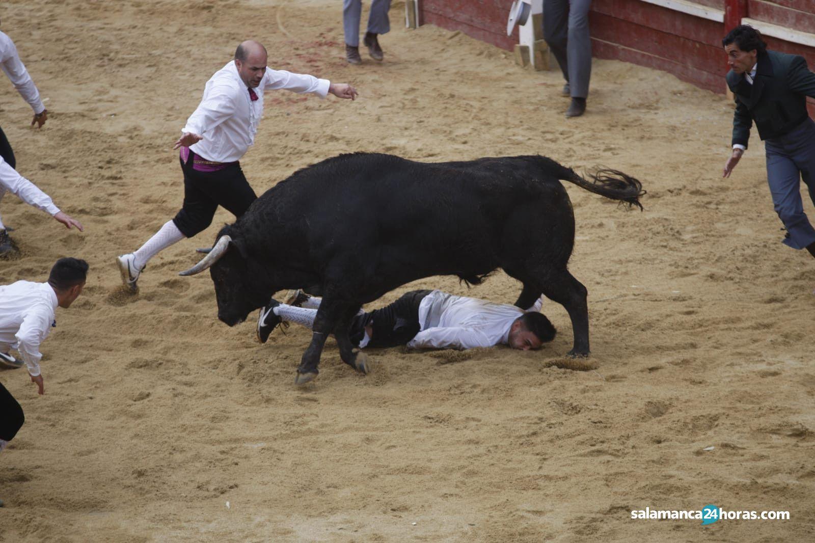 Use Ciudad Rodrigo (3)
