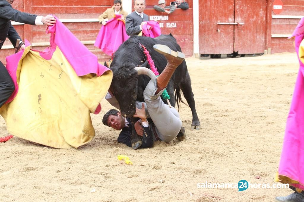 Festejo taurino carnaval del toro (6)