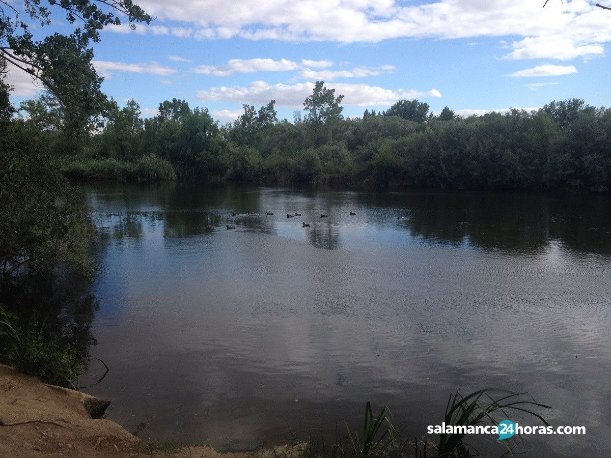 Parque fluvial La Aldehuela (17)