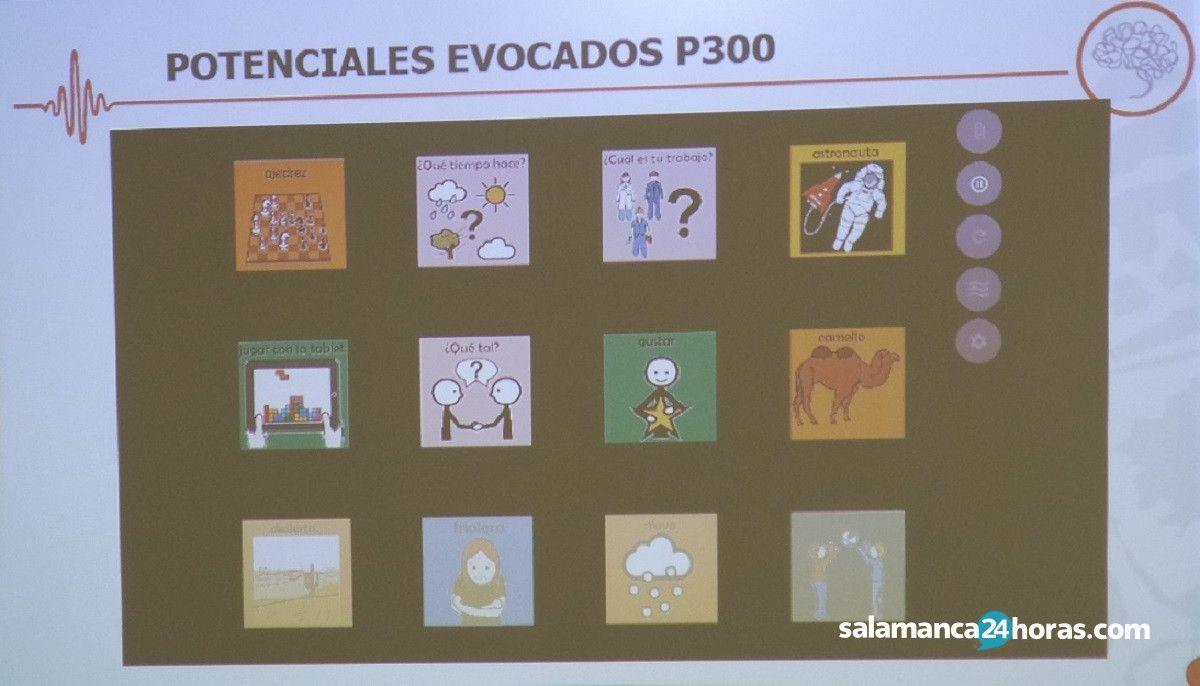 Spellbrain Aspace Salamanca (1)