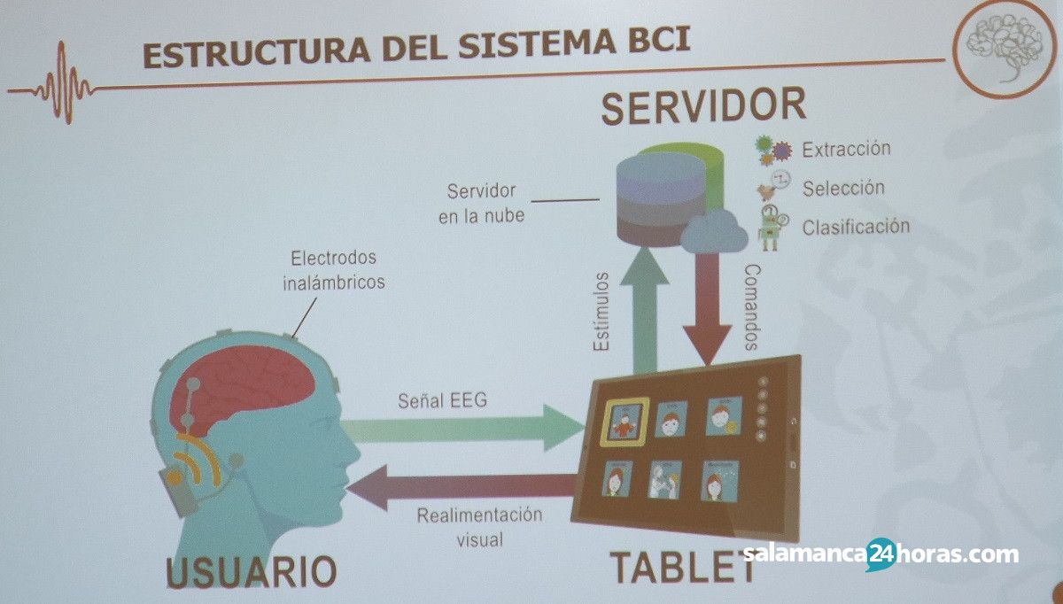 Spellbrain Aspace Salamanca (2)