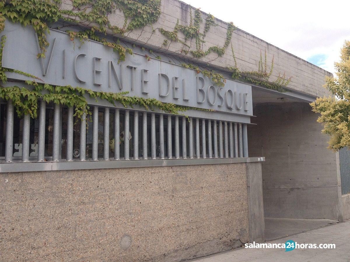 Vicente del Bosque (5)