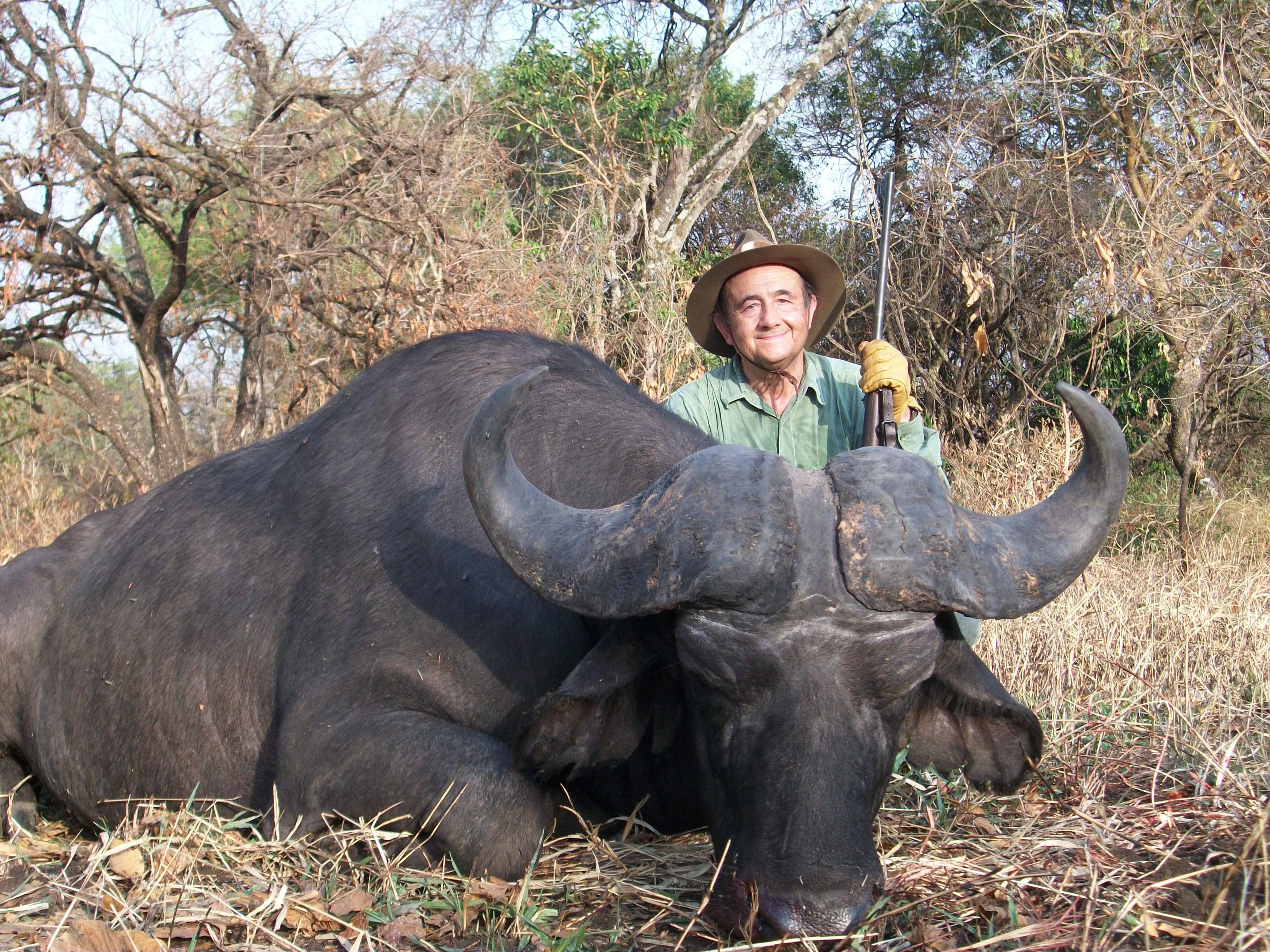Bufalo del Nilo