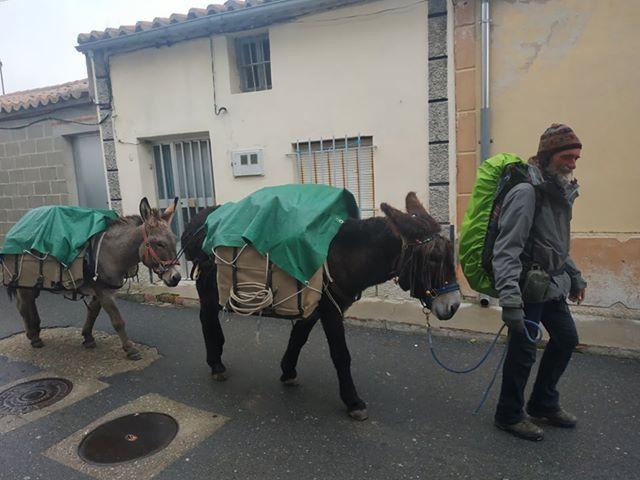 Franceses en Santiago d ela Puebla (1)