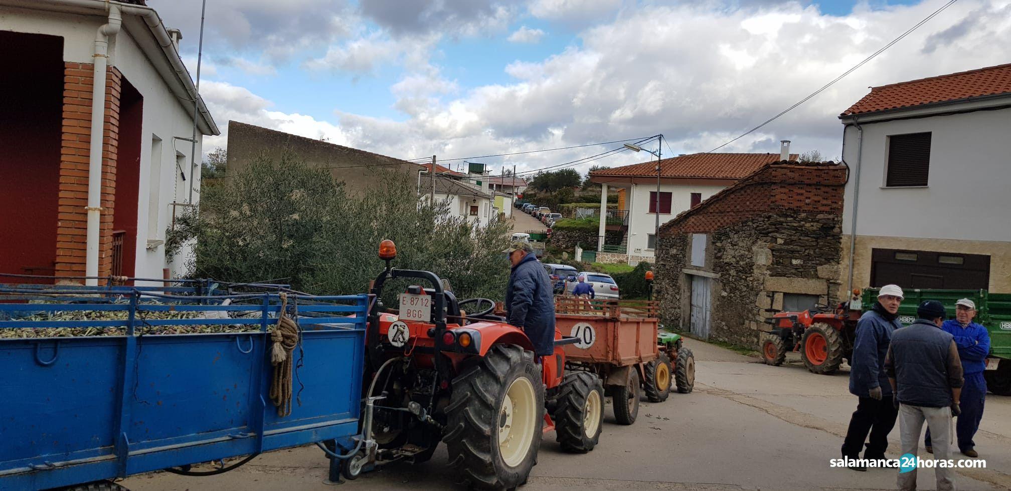 Almazara aldeadavila1