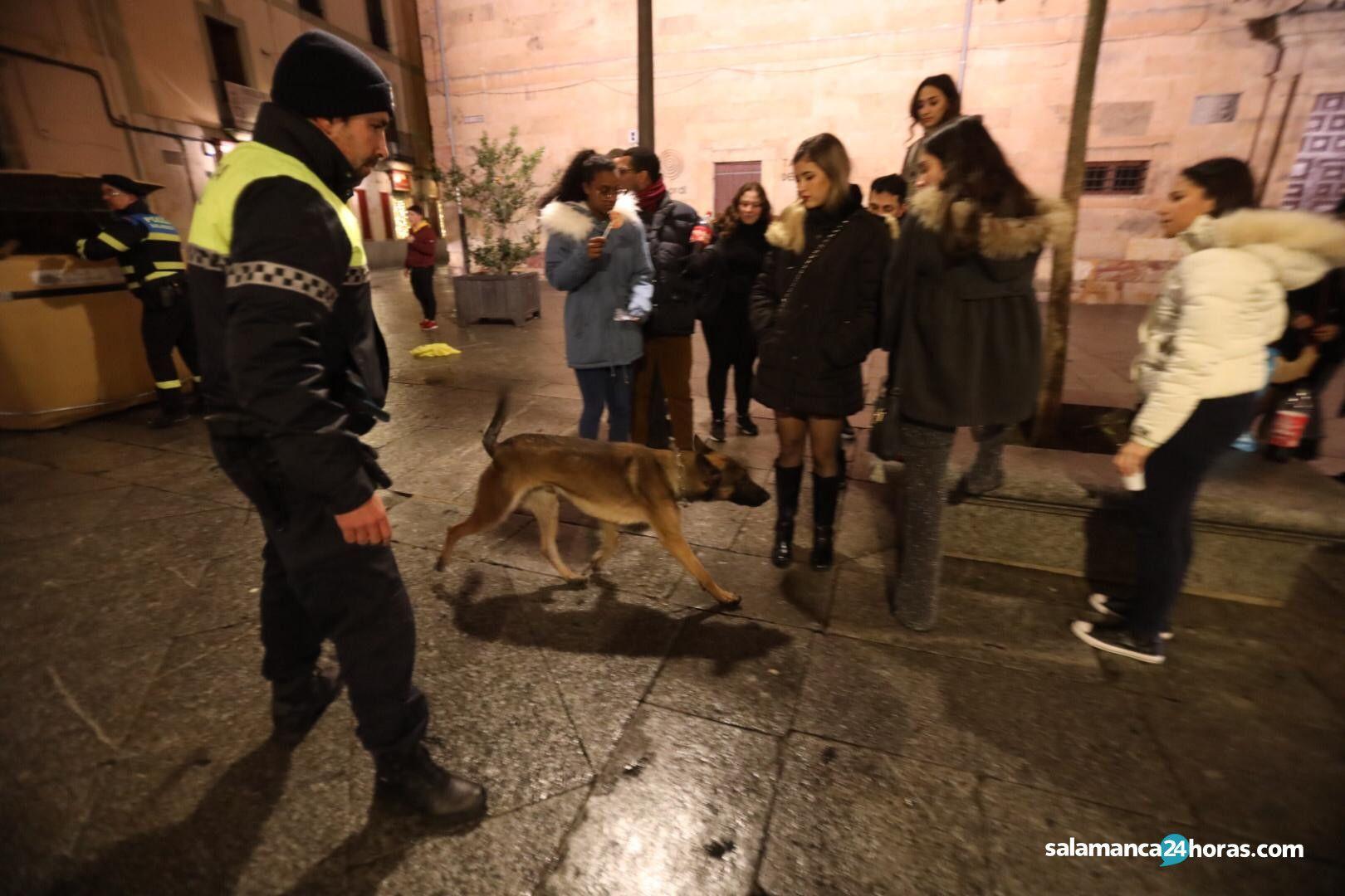 Polici?a Local alcohol FAU 7
