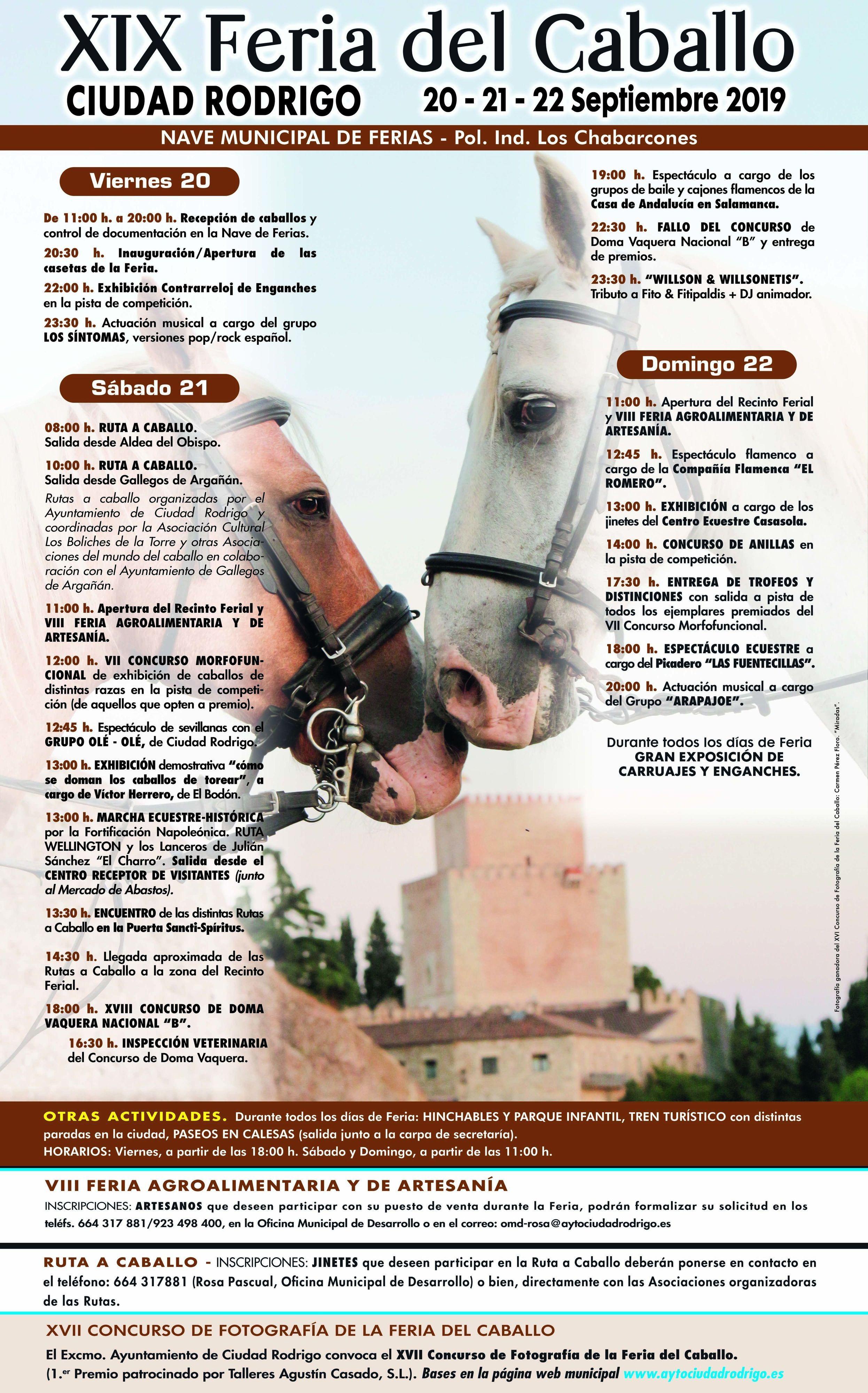 Programa feria del caballo