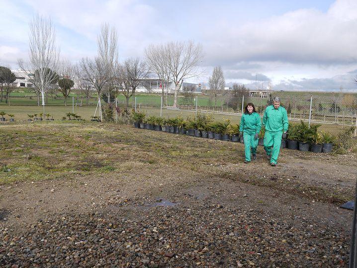 Visita AFE Entorno Verde Carbajosa (7) result