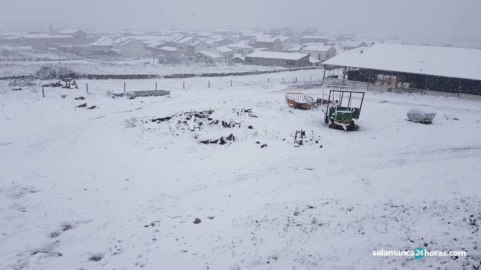 Nieve en Lumbrales e Hinojosa (11)