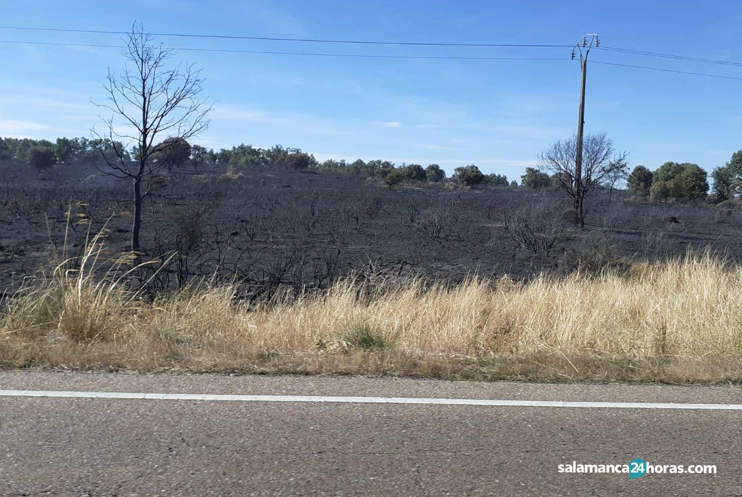 Incendio trabancaWhatsApp Image 2020 09 07 at 12.02.05 (2)