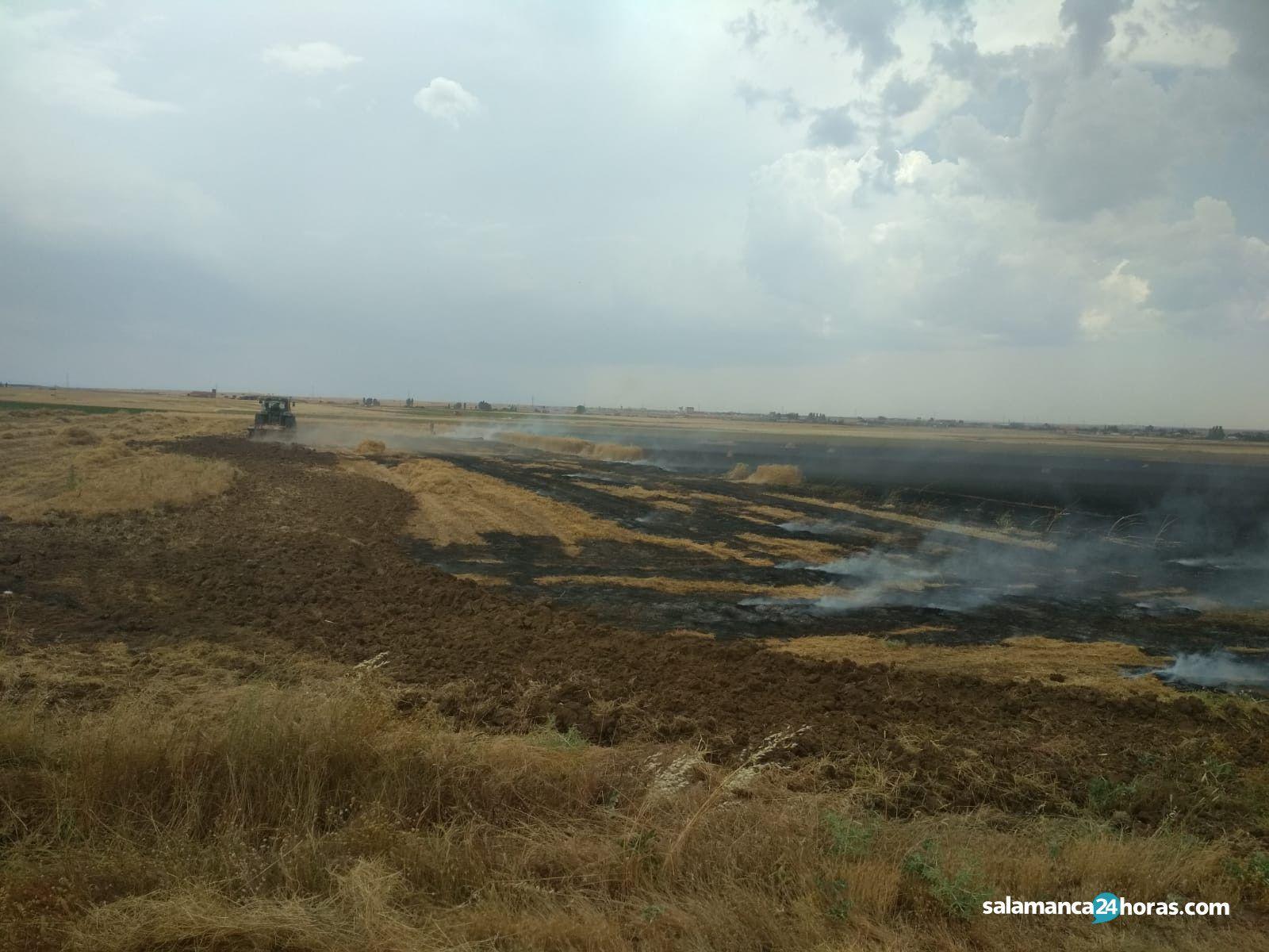 Incendio en Pedrosillo (1)