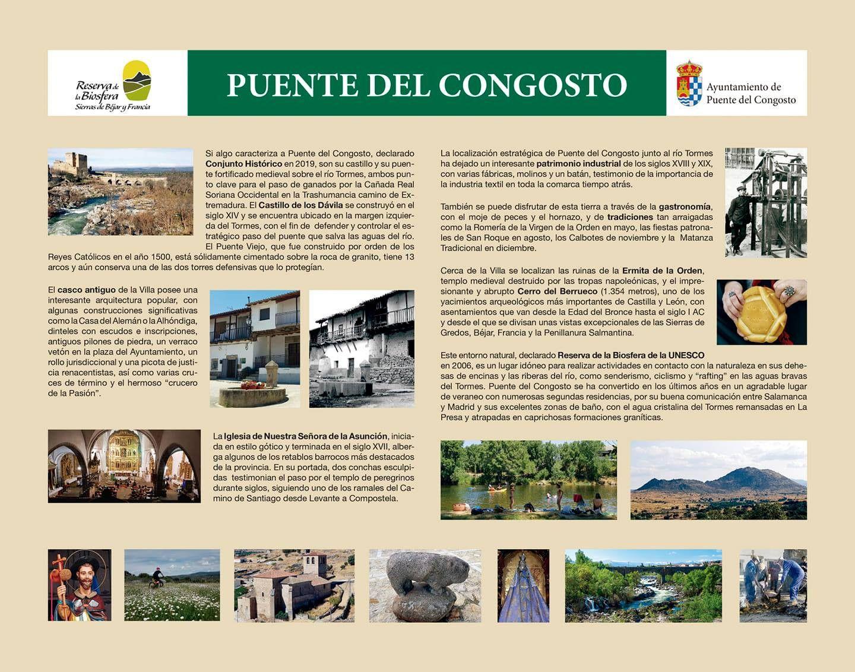 CARTEL PUENTE DEL CONGOSTO
