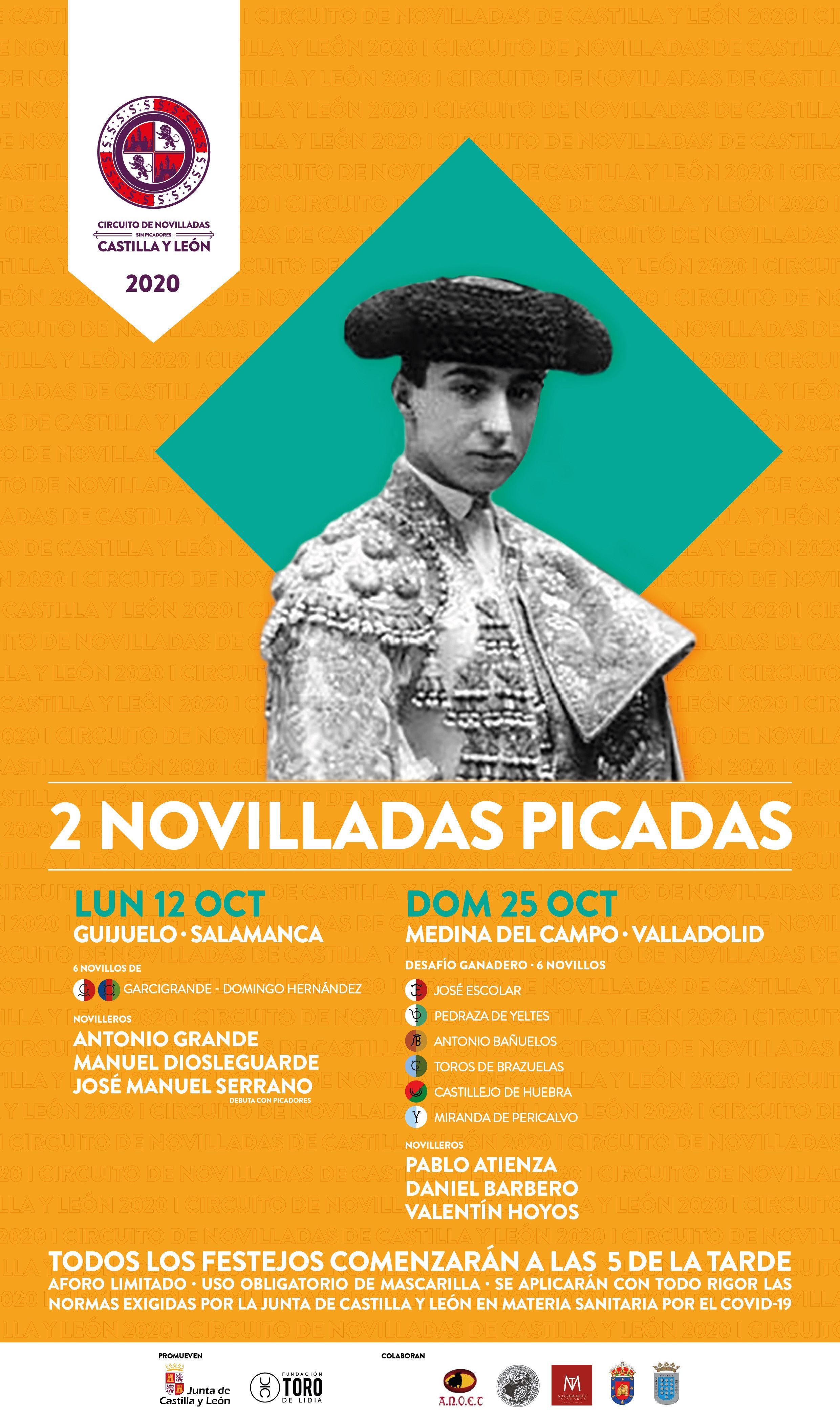 Afiche Novilladas Picadas CyL CORRECTO copia