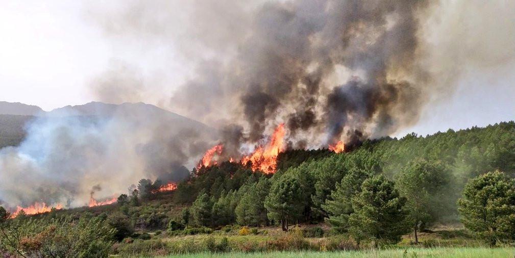 Incendio Herguijuela de la Sierra 2