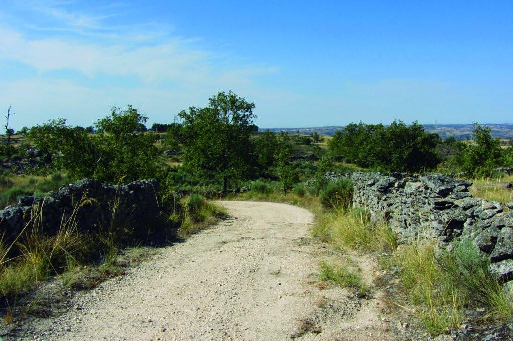Camino Natural Senda del Duero Trabanca Villarino (2)
