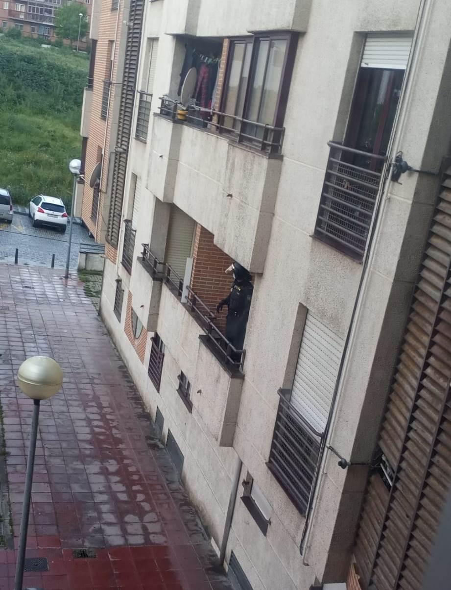Policia con perros (1)